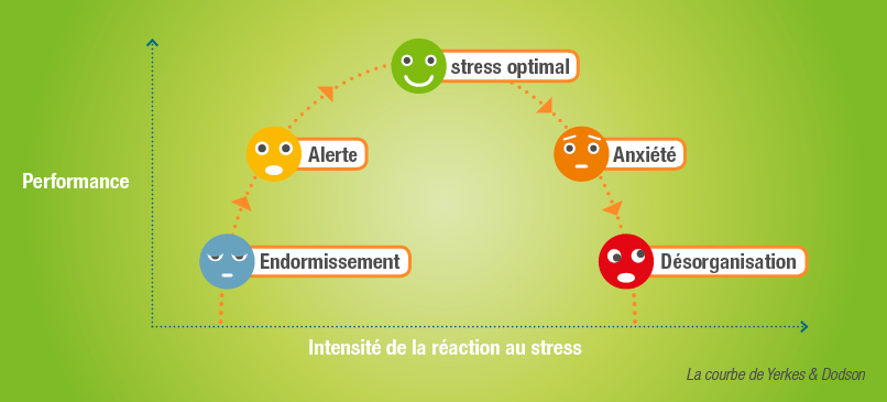 courbe stress optimal Yerkes et Dodson