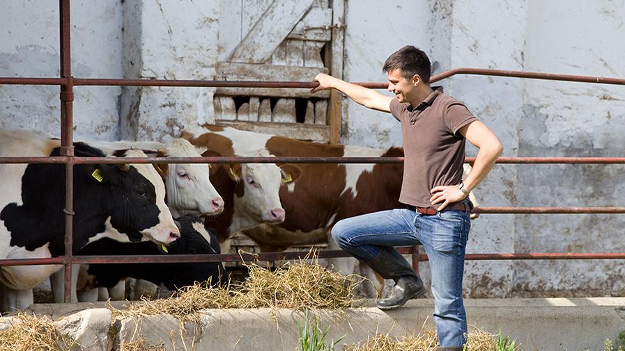MMAPRO_Aides-installation-des-jeunes-agriculteurs.jpg