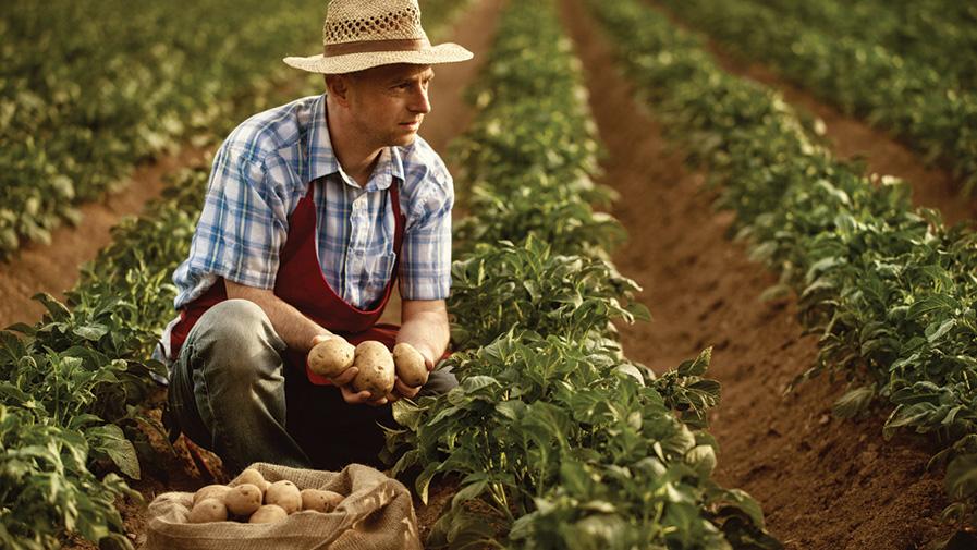 MMAPRO_crise-exploitation-agricole-897x505px.jpg