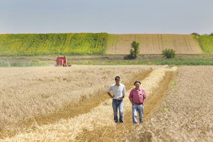Assurance batiment agricole MMA